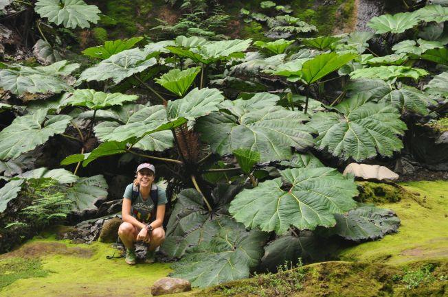 Catara Bajos del Toro. Costa Rica