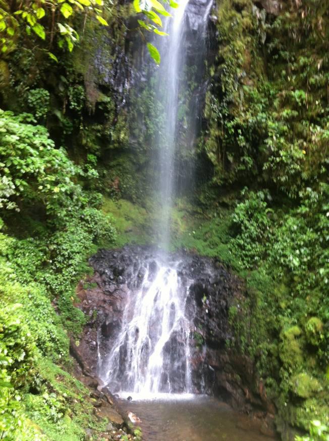 Catarata Fátima en Bosque de Paz. Costa Rica