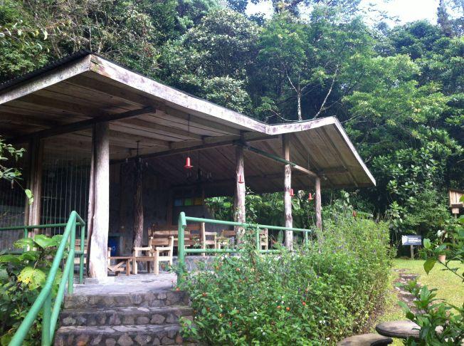 Reserva Biológica, Bosque de Paz. Bajos del Toro