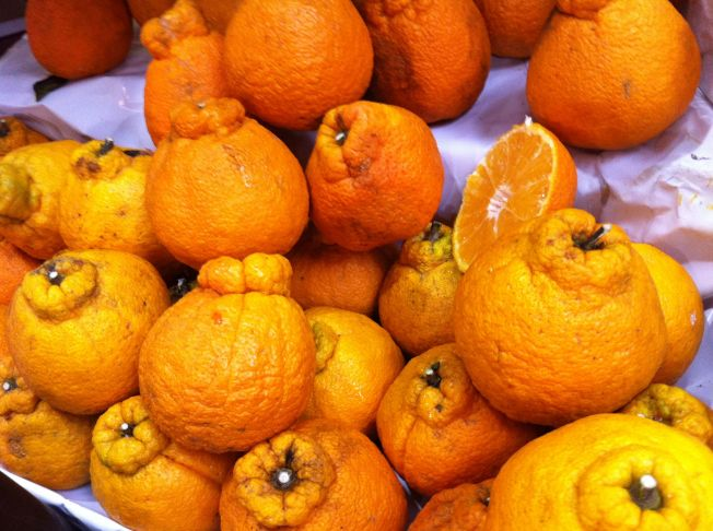 Mandarinas japonesas Kumquat en el Mercado Municipal de São Paulo